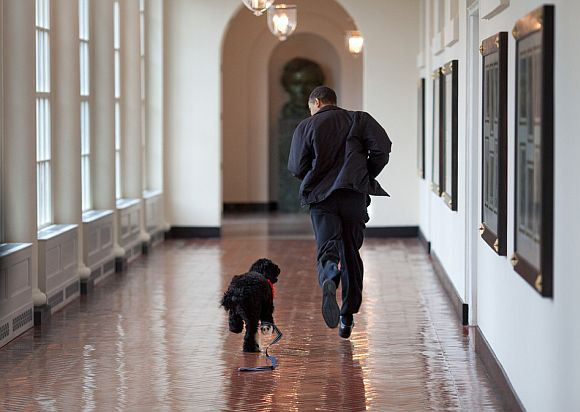 Obama runs through the East Colonnade of the White House with Bo, the family's new dog, on March 15, 2009